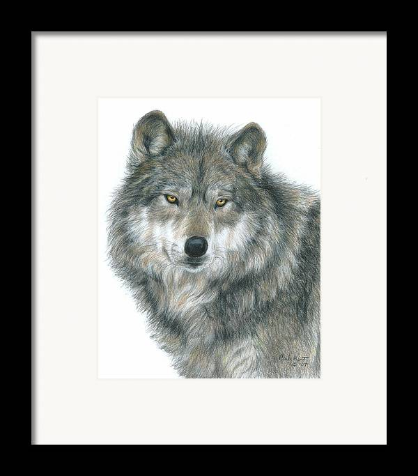 Wolf Framed Print featuring the drawing Haunting Eyes by Carla Kurt
