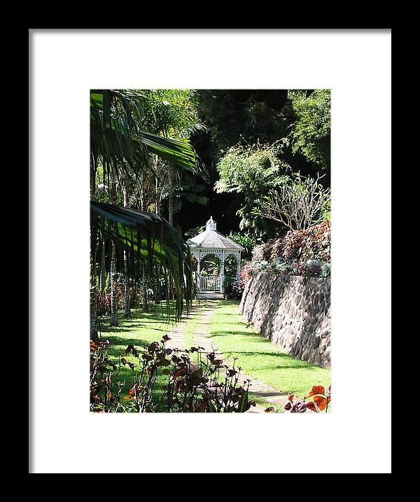 Garden Framed Print featuring the photograph Hawaiian Hideaway by Diane Merkle