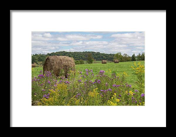Landscape Framed Print featuring the photograph Hay Bales In Summer by Rebecca Hazen