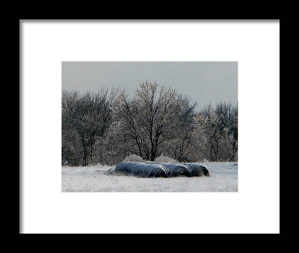 Nature Framed Print featuring the photograph Hay Bales by Martie DAndrea
