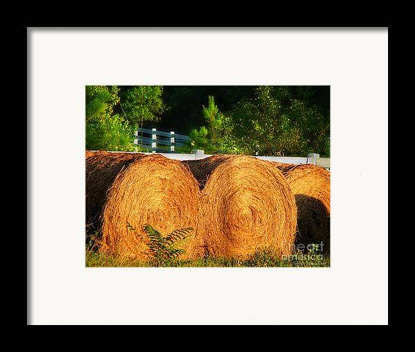 Landscape Framed Print featuring the photograph Hay Bales by Todd A Blanchard
