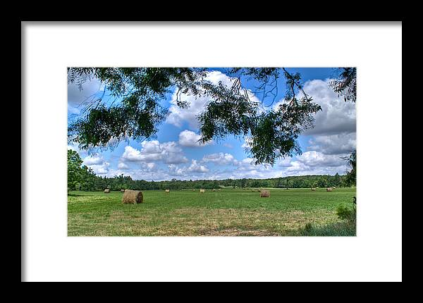 Hay Framed Print featuring the photograph Hay Field In Summertime by Douglas Barnett