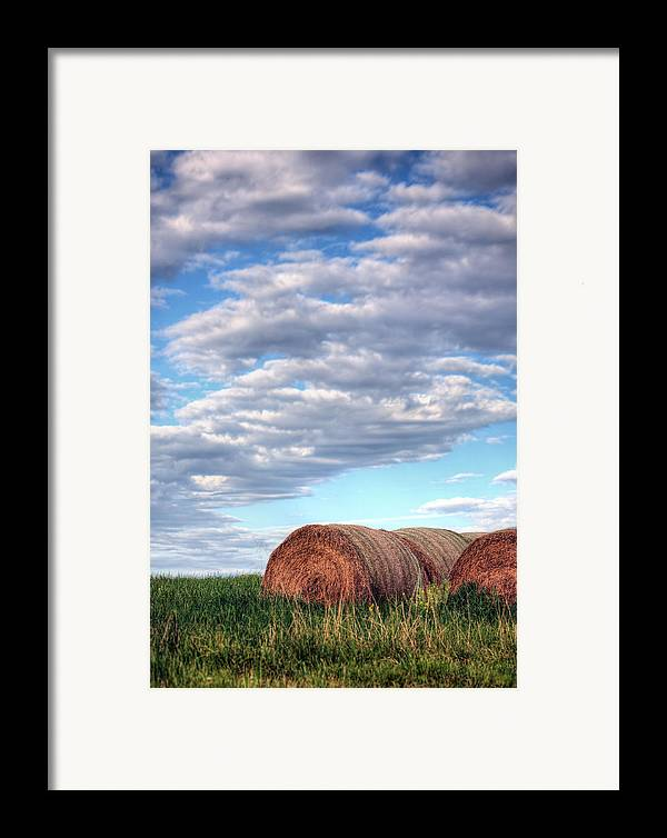 Hay Framed Print featuring the photograph Hay It's Art by JC Findley