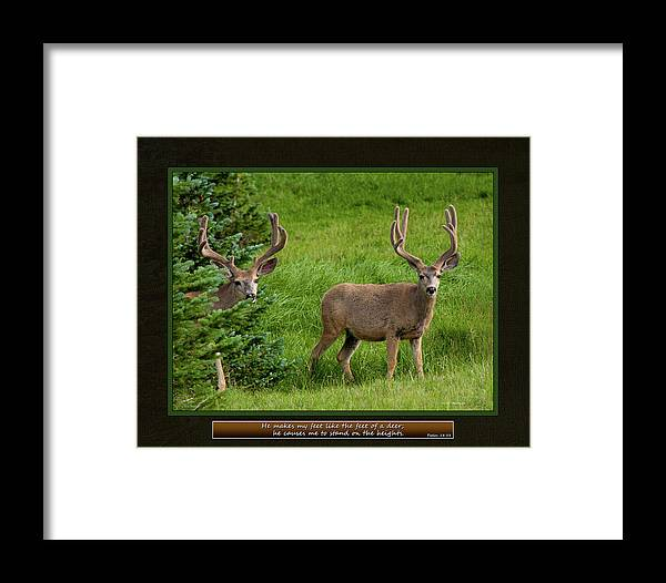 Bible Framed Print featuring the photograph He Makes My Feet by Ward Thurman