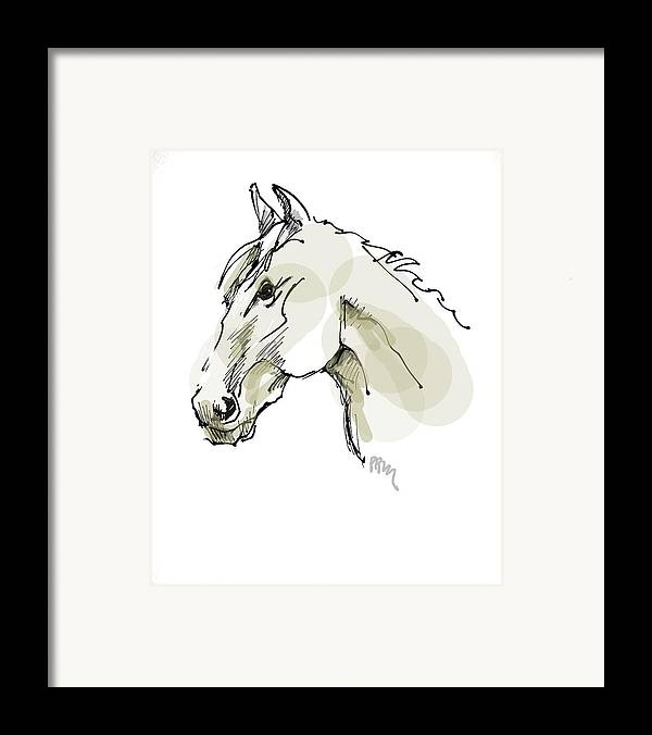 Horse Framed Print featuring the drawing Head Sketch by Paul Miller