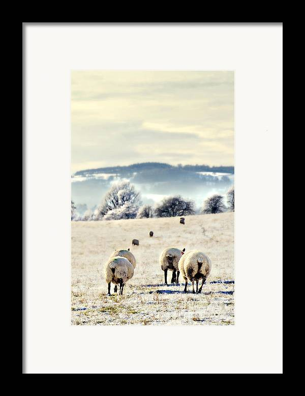 Landscape Framed Print featuring the photograph Heading Home by Meirion Matthias