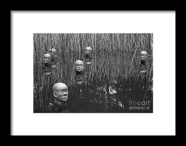 Admarshall Framed Print featuring the photograph Heads by AD Marshall