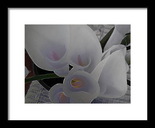 Lilly Framed Print featuring the digital art Heather's Flowers by Lisa Redfern