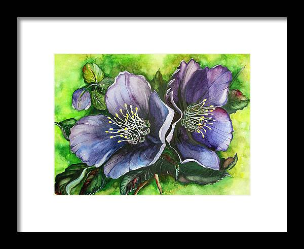 Flower Painting Botanical Painting Original W/c Painting Helleborous Painting Framed Print featuring the painting Helleborous Blue Lady by Karin Dawn Kelshall- Best