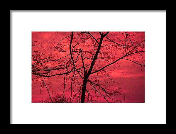 Sunset Framed Print featuring the photograph Hello Evening by Evelyn Patrick