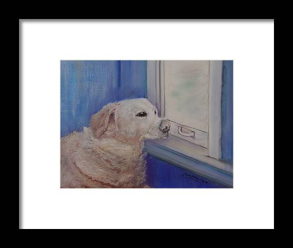 Dogs Framed Print featuring the painting Henry by Loretta Luglio