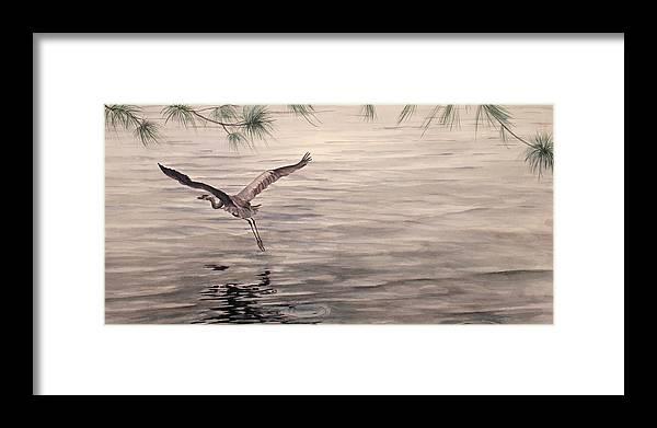 Heron Framed Print featuring the painting Heron In Flight by Debbie Homewood