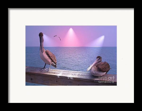 Birds Framed Print featuring the photograph Hey Baby by Rana Adamchick
