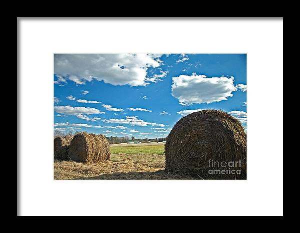 Hey Framed Print featuring the photograph Hey by Maureen Norcross