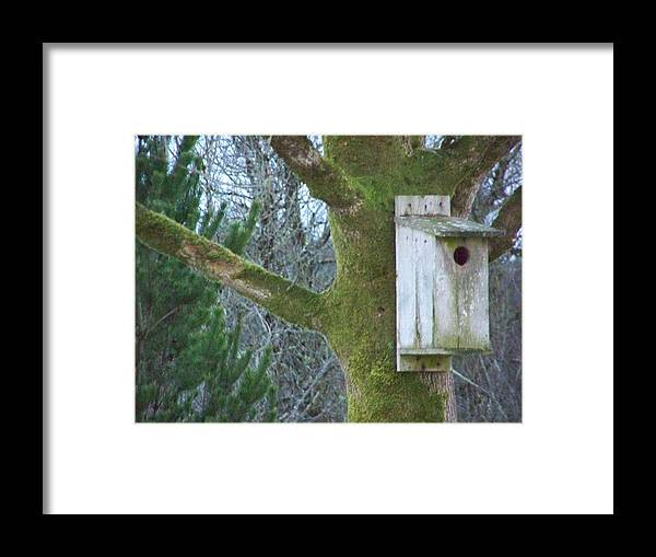 Digital Artwork Framed Print featuring the photograph Hey There For Sale Or Rent by Laurie Kidd