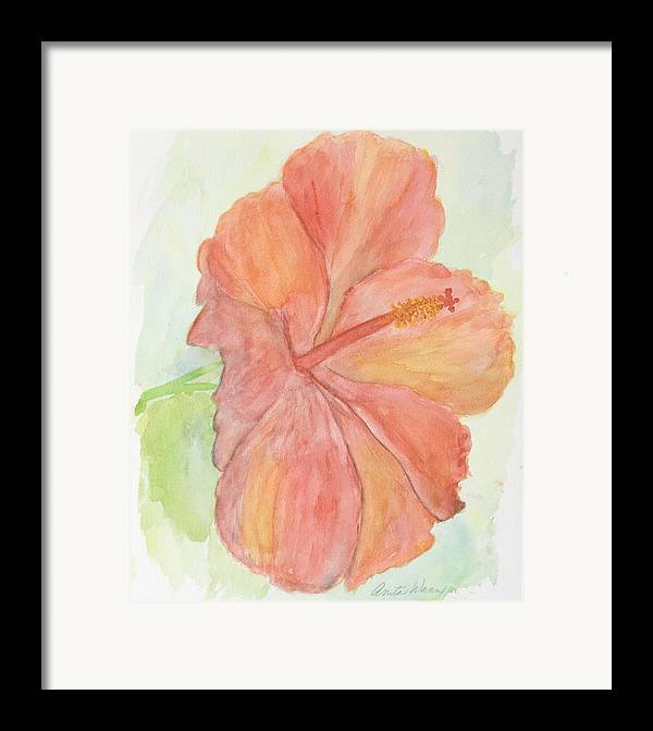 Flower Framed Print featuring the painting Hibiscus by Anita Wann