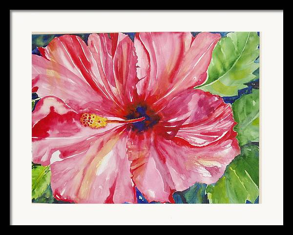 Flower Framed Print featuring the painting Hibiscus by Maritza Bermudez