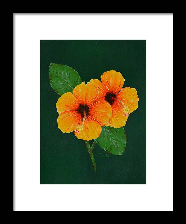 Hibiscus Framed Print featuring the painting Hibiscus by Roberta Landers