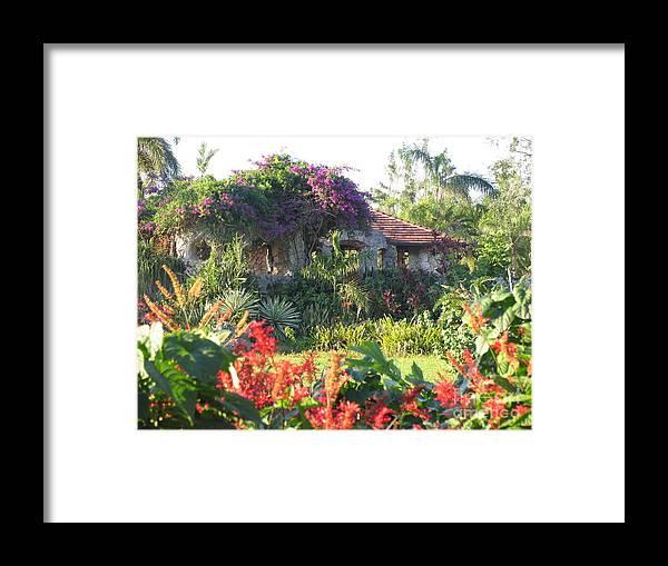 Flowers Framed Print featuring the photograph Hidden Beauty by Stephanie Richards