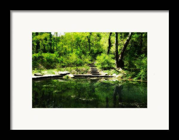 Pond Framed Print featuring the photograph Hidden Pond At Schuylkill Valley Nature Center by Bill Cannon