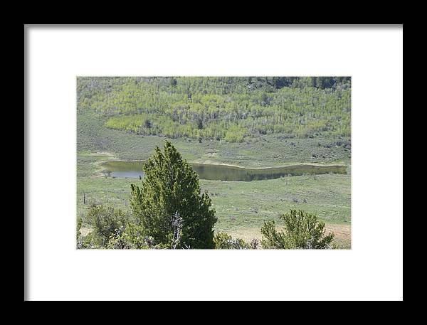 Landscape Framed Print featuring the photograph Hidden Pond by Susan Pedrini