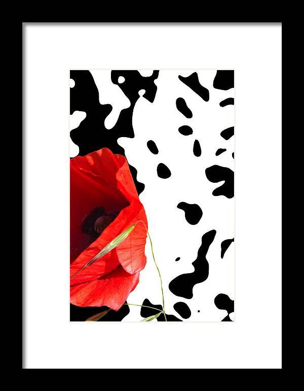Poppy Framed Print featuring the mixed media Hidden Poppy by Martine Affre Eisenlohr