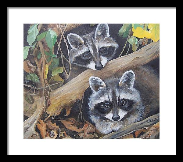 Raccoons Framed Print featuring the painting Hidden Twins by Audrie Sumner