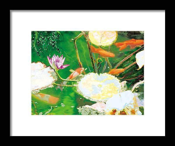 Koi Framed Print featuring the photograph Hide And Seek Kio In The Green Pond by Judy Loper