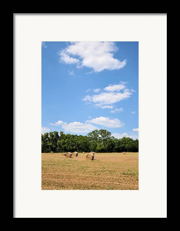Landscapes Framed Print featuring the photograph High As The Sky by Jan Amiss Photography