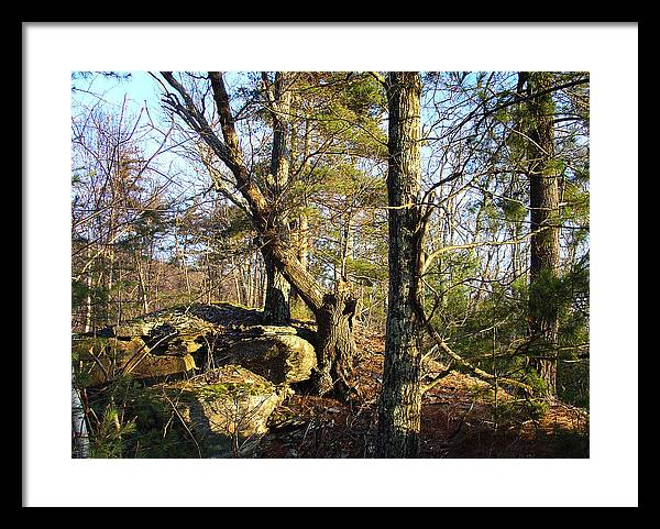 Greene County Framed Print featuring the photograph High Atop White's Road Solitude Is Met By Dawn by Terrance DePietro