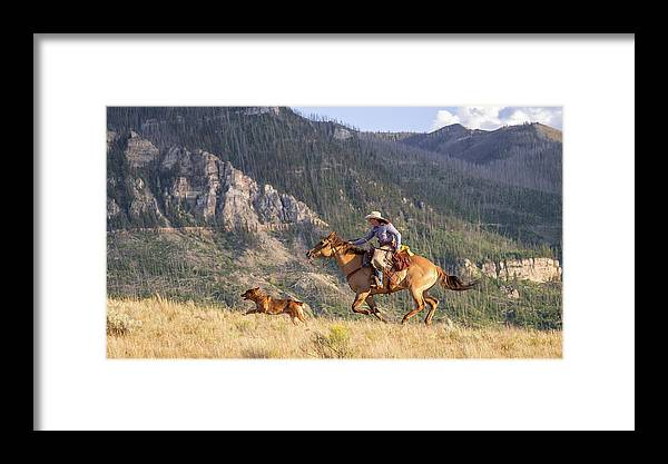 Cowboy Framed Print featuring the photograph High Country Ride by Jack Bell