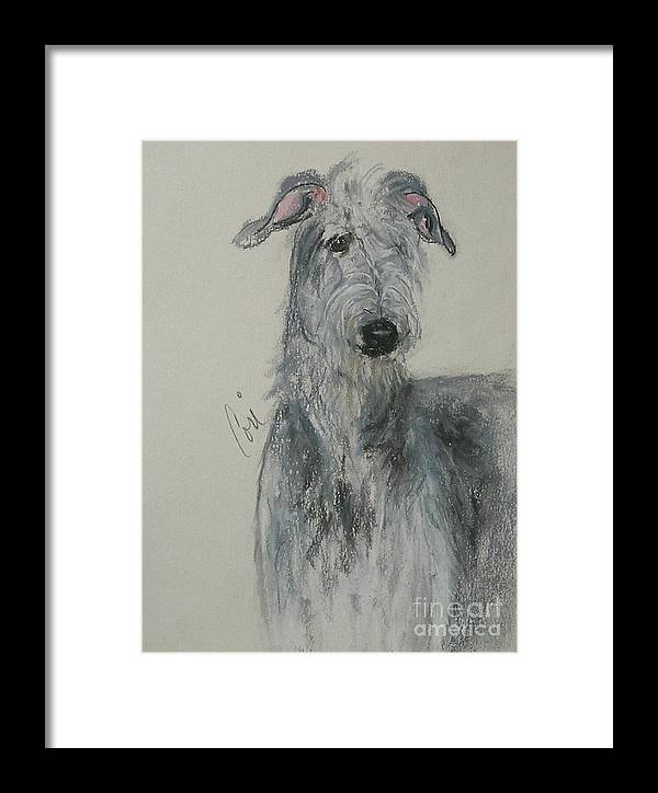 Scottish Deerhound Framed Print featuring the drawing Highland Hunter by Cori Solomon