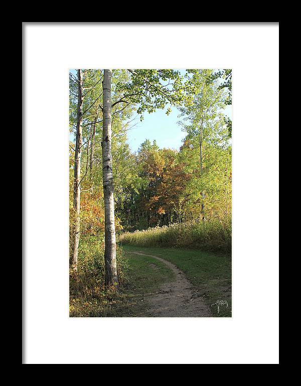 Trail Framed Print featuring the photograph Hiking Trail In Autumn Sunset by Catalina Diaz