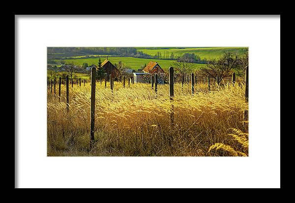 Fields Of Gold Framed Print featuring the photograph Hillside In Fall Jalaksova, Slovakia by Kurt Meredith