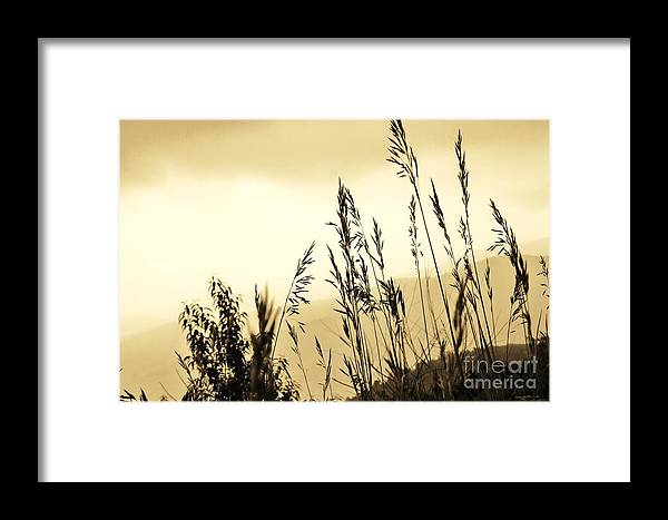 Country Framed Print featuring the photograph Hillside by Julie Lueders
