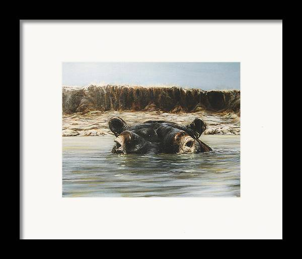 Wildlife Framed Print featuring the painting Hippo by Steve Greco