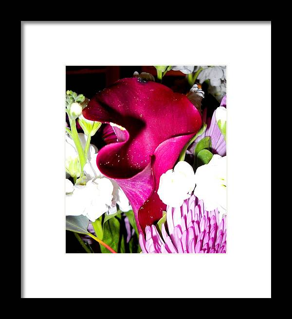 Photos Framed Print featuring the photograph Honeybee Heaven by Leslie Revels