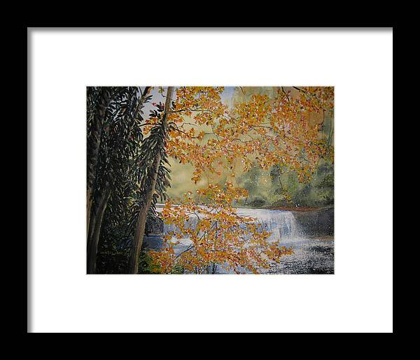 Landscape Framed Print featuring the painting Hooker Falls by Shirley Braithwaite Hunt