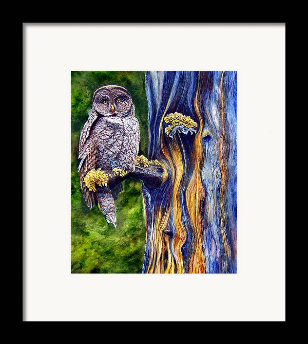 Great Hray Owl In Tree Framed Print featuring the painting Hoo's Look'n by JoLyn Holladay