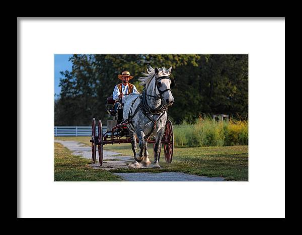 Horse Framed Print featuring the photograph Horse And Buggy by Lone Dakota Photography