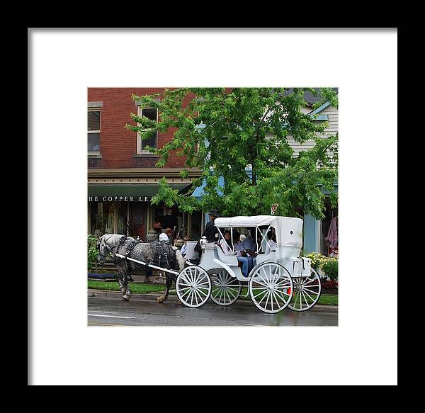 Horse And White Buggy Framed Print featuring the photograph Horse And White Buggy by Nancy Bradley