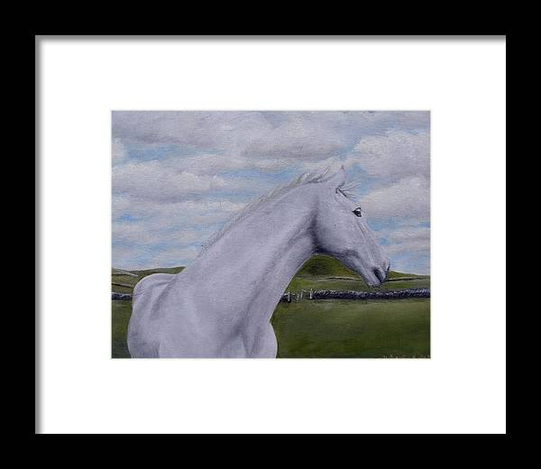 Horse Framed Print featuring the painting Horse by Diane Daigle