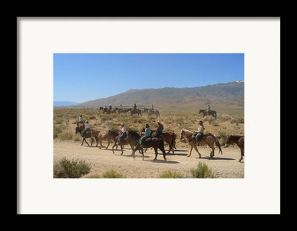 Horses Framed Print featuring the photograph Horse Drive From June Lake To Bishop California by Christine Till