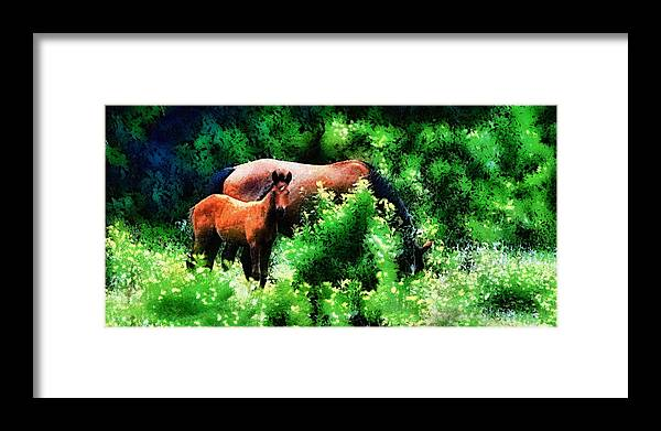Horse Framed Print featuring the photograph Horse Family by Galeria Trompiz