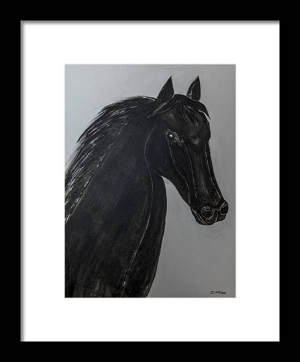 Horse Framed Print featuring the photograph Horse Named Misty by Jim McGraw