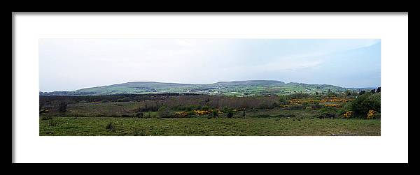 Ireland Framed Print featuring the photograph Horses at Lough Arrow County Sligo Ireland by Teresa Mucha