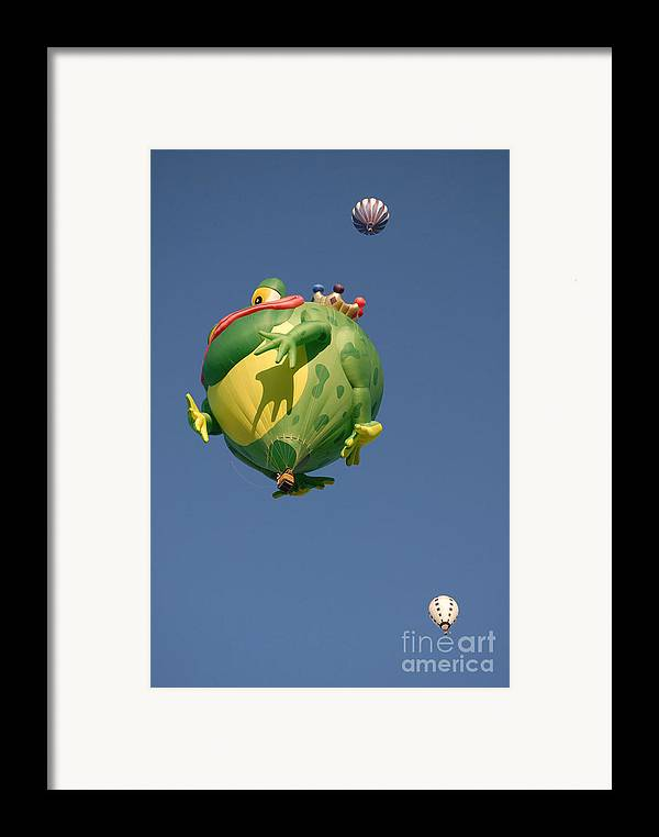 Hot Air Balloon Framed Print featuring the photograph Hot Frog by Dennis Hammer