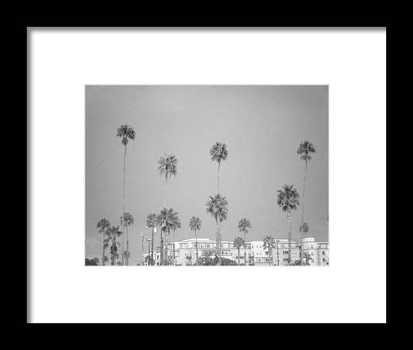 Palm Trees Framed Print featuring the photograph Hotel California by Melody Glennon