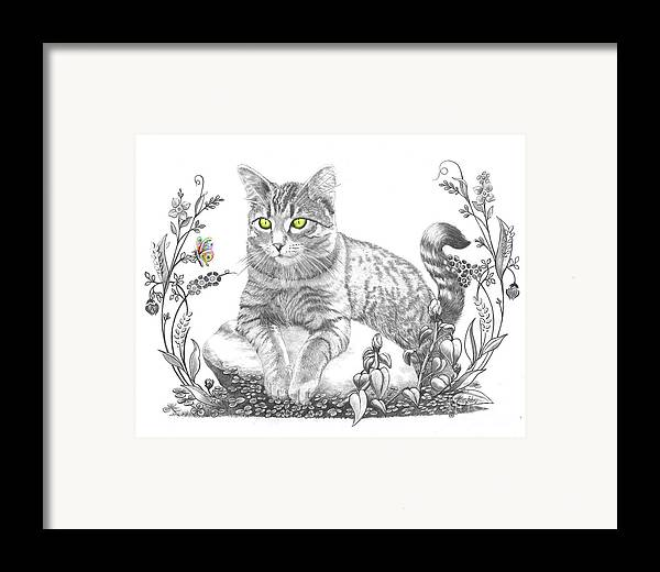 Cat Framed Print featuring the drawing House Cat by Murphy Elliott