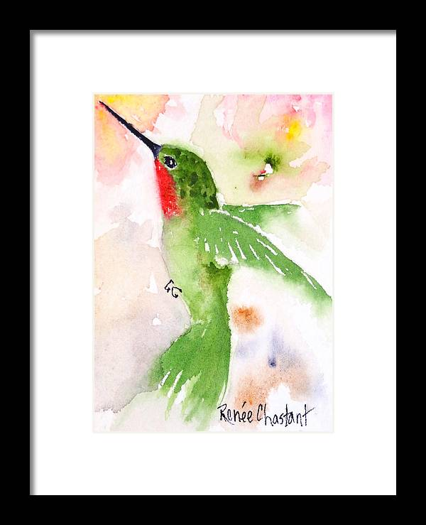 Hummingbird Framed Print featuring the painting Hovering Anna's Hummingbird by Renee Chastant
